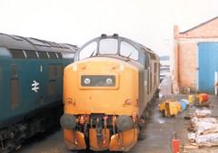 37135 (R~P~M) Tags: uk greatbritain england train diesel unitedkingdom shed railway gloucestershire gloucester depot locomotive 37 britishrail glos hortonroad