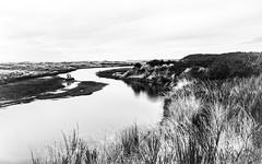 Copalis (Steven Schnoor) Tags: beach water flow sand dunes grasses copalis guessyouhadtobethere copaliswashington hadadrive hadawalk
