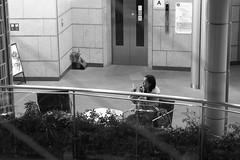 Making up Mori tower  Tokyo (Julien Mailler) Tags: world street travel people white black building tower up japan lady japanese tokyo julien women nippon kansai making mori japon nihon japonais nationalgeographic reflectionsoflife lovelyphotos jules1405 unseenasia earthasia mailler tokyote