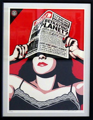 Shepard Fairey - Global Warning (Thethe35400) Tags: obey fairey shepard