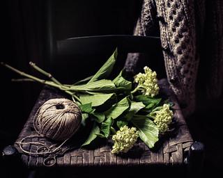 Irish Knit~