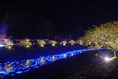 20160305-DSC_2237.jpg (d3_plus) Tags: street sea sky plant flower nature japan spring nikon scenery nightshot cloudy bloom  cherryblossom  sakura lightup nightview 28105mmf3545d nikkor    shizuoka    izu   28105   rapeblossom    28105mm  zoomlense  minamiizu    kawazuzakura    28105mmf3545 d700 281053545  nikond700 shimokamo aiafzoomnikkor28105mmf3545d nightcherryblossom 28105mmf3545af    southcherryblossomandrapeblossomfestival aiafnikkor28105mmf3545d shootingstarsandsakurainnight sakurainnight