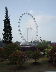 Singapore Flyer (t0mmagli0) Tags: singapore ferriswheel singaporeflyer