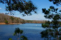 Peaceful Afternoon At the Lake (redhorse5.0) Tags: cove powerboat lakelanier boatramp sonya850 redhorse50