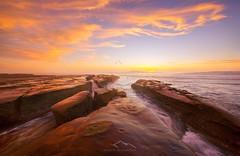 Flames Of Freedom (Sairam Sundaresan) Tags: ocean california sunset sea seascape colour nature colors sandiego wideangle lajolla finished sairam sundaresan lajollacoves ef1635mm canon5dmarkiii sairamsundaresan