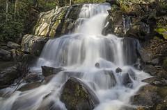 IMGPE19144_Fk - Great Smoky Mountain National Park - Laurel Falls (David L. Black) Tags: us unitedstates tennessee waterfalls sevierville greatsmokymountainsnationalpark