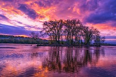 Purple Pain (Doug Wallick) Tags: sunset music reflection minnesota river mississippi death memorial colorful purple minneapolis prince icon pop avenue paisley royalty culure parkfirst
