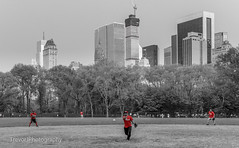 Softball game in Central Park, New York (trevorjphotography) Tags: newyorkcity trees red newyork game grass sport skyline canon ball centralpark manhattan midtown pitch softball pitcher fastball curveball throwing compete thrower blackandwhitewithcolor hintofcolour 600d hintofcolor strike1 efs1855mmf3556isii 432parkavenue