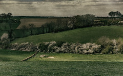 Landscape in April