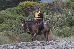 IMG_EOS 7D Mark II201604039653 (David F-I) Tags: horse equestrian horseback horseriding trailriding trailride ctr tehapua watrc wellingtonareatrailridingclub competitivetrailriding sporthorse equestriansport competitivetrailride april2016 tehapua2016 tehapuaapril2016 watrctehapuaapril2016