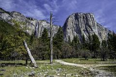 El Capitan and Ribbon Fall (lennycarl08) Tags: california nationalpark yosemite elcapitan ribbonfall