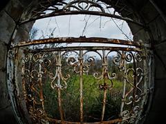 the secret garden-4240104 (E.........'s Diary) Tags: st garden gate andrews fife secret eddie denbrae rossolympusomdem5markiiscotlandapril2016spring