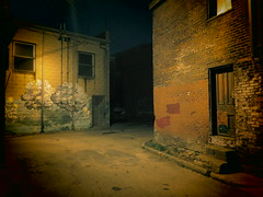 It's Still No Secret Garden. (david grim) Tags: alley pittsburgh pennsylvania streetphotography pa 9thward lawrenceville ninthward alleghenycounty
