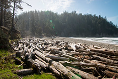 A little hike out to Short Sands Beach, Oswald West State Park (_Kickstand) Tags: oregon oswaldweststatepark