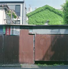 (fukukawa takashi) Tags: 6x6 tlr film tokyo harajuku selfdeveloped