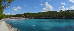 Parc Natural de Mondrag, Mallorca, Set15 (Virginia Gin) Tags: nikon mallorca illesbalears set15 parcnaturaldemondrag