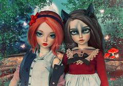 5 differences (AniredaDolls) Tags: new family werewolf wolf doll dolls head event carrot bjd fairyland aline fluo nf freackles mnf newfamily minifee angeltoast rakeruspace