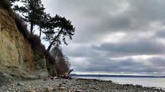 DoubleBluff_resize (EnduroDoug) Tags: beach hiking whidbeyisland oldgrowth cedartree
