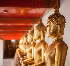 Thailand - Golden buddhas (Cyrielle Beaubois) Tags: thailand temple gold bangkok buddhism palace thalande asie bouddhisme 2015 canoneos5dmarkii cyriellebeaubois