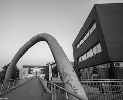 Krickesteg (wpt1967) Tags: bridge bw sw brcke castroprauxel strzendelinien erinpark tokina1116mm eos60d wpt1967