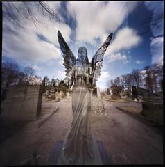 Worldwide Pinhole Photography Day 2016 (Foide) Tags: angel doubleexposure pinhole estenopeica lochkamera nolens