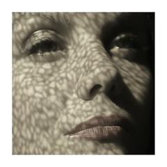 Tattoo (DEWEGGIS) Tags: light shadow woman detail texture motif monochrome silhouette tattoo backlight contraluz paper pattern veil haiku pentax lace ricoh dentelle contrejour profil pochoir feminity trame contraluce
