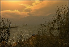 The Fishing Boat (ilyra.chardin) Tags: ocean sunset seagulls clouds bay boat dock rocky serene fishingboat rockycoast