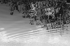Loe Pool reflections bw (chrisotruro) Tags: water reflections ripples
