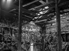 test (1 of 1) (silverlake_bs) Tags: park abandoned mamiya film zoo trix griffith m645