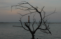 Morris Island Lighthouse, South Carolina (lighthouser) Tags: usa lighthouse southcarolina morris morrisisland lighthousetrek