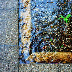 =Appearance of water-119On a border of stones and the water (kouichi_zen) Tags: city nature water leaves rain stone geometry ripple ground