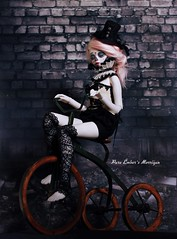 Charcoal (pure_embers) Tags: uk pink white alpaca girl wall ball hair photography skull photo doll dolls skin tricycle ruin sugar charcoal bjd resin pure joint embers calavera msd morrigan unoa lusis embersmorrigan