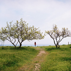 Odessa (Eugene Woronyuk) Tags: travel people film girl analog landscape spring kodak odessa ukraine minimal april analogue 120mm kodakportra400 kodakportra filmphoto filmnotdead 120
