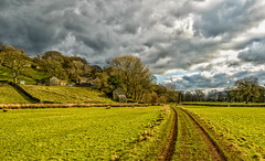 spring path (rich01535) Tags: uk trees colors field grass clouds countryside spring nikon colours path yorkshire country ngc fullframe rainclouds yorkshiredales pateleybridge d610 nikond610