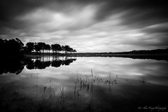 Tree Peninsula at Diascund Reservoir Park - Lenexa, VA (High Contrast) (michael.young1977) Tags: longexposure trees bw water clouds contrast movement nikon df wide ndfilter 10stop