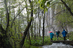 Plitvice Lakes National Park on a rainy day (Roberto Spagnoli) Tags: trees alberi creek trekking waterfall plitvice cascata torrente camminare
