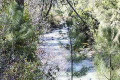 1204162508 (jolucasmar) Tags: viaje primavera andaluca paisaje contraste ros mirador curso puestasdesol cazorla montaas cuevas bosques composicion panormica viajefotof