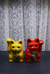 Maneki neko on display  Osaka (Julien Mailler) Tags: world street travel japan cat asian japanese julien asia display lucky nippon osaka neko asie kansai japon nihon maneki japonais nationalgeographic asiatique honshu lovelyphotos jules1405 unseenasia earthasia mailler