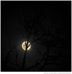 The Christmas Full Moon (W.Utsch) Tags: schweiz ticino ch melide