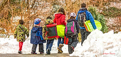 family outing (albyn.davis) Tags: park nyc newyorkcity family winter people snow colors yellow walking children parents colorful bright brothers manhattan father mother vivid siblings backpacks sleds