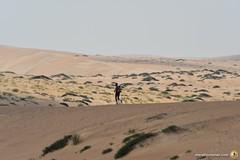 3-Oman-Desert-Marathon-Day-6_7226