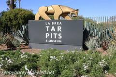 Los Angeles La brea tar pits  (2 of 50) (frank j skokoski's green ridge photography) Tags: california losangeles tar tarpits labreatarpits