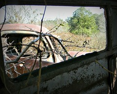 the Forgotten (Dave* Seven One) Tags: rot ford chevrolet abandoned broken window rotting overgrown junk rust rusty pickup pickuptruck used forgotten dodge rusting junkyard rotted carporn