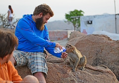"""QUENCH THE THIRST OF OUR WORLD"" (GOPAN G. NAIR [ GOPS Photography ]) Tags: love tourism water animal photography monkey affection drink karnataka thirst hampi quench coexist gops gopan anegundi gopsorg gopangnair gopsphotography"
