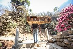 Nepal 2013 (Brad Girard) Tags: nepal kathmandu mteverest
