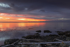 New Day (Paul Rioux) Tags: ocean morning sea seascape sunrise dawn rocks bc waterfront britishcolumbia victoria vancouverisland driftwood seashore daybreak cloverpoint