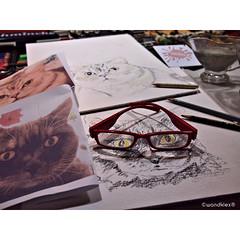 ulkBrille (wandklex Ingrid Heuser freischaffende Künstlerin) Tags: hund etsy etsyshop dawanda auftragsmalerei wandklex wandkleks wandklecks etsyresolution2016 etsyresolutionde