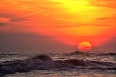 Splash1 (Darren-) Tags: ocean new travel sea sky ny newyork color art beach nature water beautiful beauty america festive fun outdoors island hamptons nikon perfect pretty waves outdoor gorgeous dunes longislandny atlantic east atlanticocean eastend thehamptons d5200 beachseaoceanskywavesfun oceanbeachsandnaturefunwesthampton