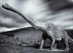 Vuelta a la prehistoria? (Sergio Nevado) Tags: white black blanco ruta la long exposure dino negro rioja exposicion larga dinosaurios enciso