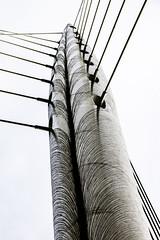 Illusion (tootdood) Tags: bridge blackandwhite manchester illusion wires trinity guide canon70d